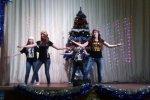 Новогодний праздничный концерт