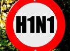 Вирус гриппа A (H1N1)