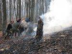 Борьба с лесными пожарами